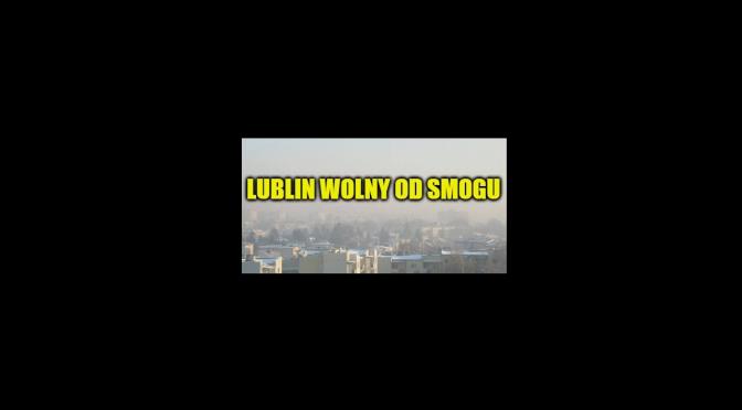 Lublin wolny od smogu – debata organizacji pozarządowych