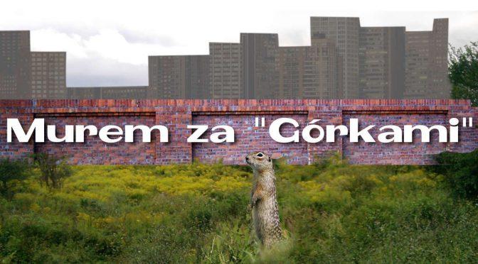 Murem za Górkami, Górkami Czechowskimi w Lublinie